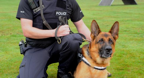 Britain's Longest Serving Police Dog Retires