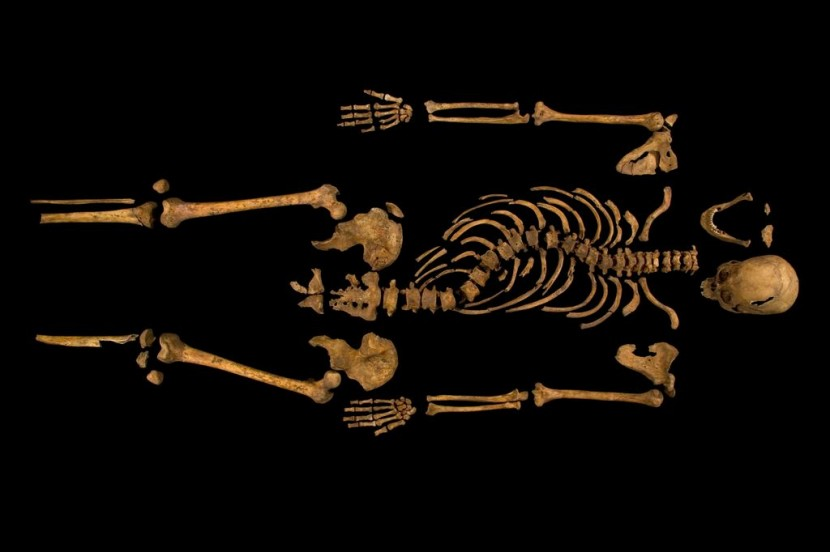 Richard III's skeleton found in Leicester car park