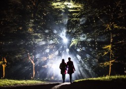 Enchanted Christmas at Westonbirt (3)