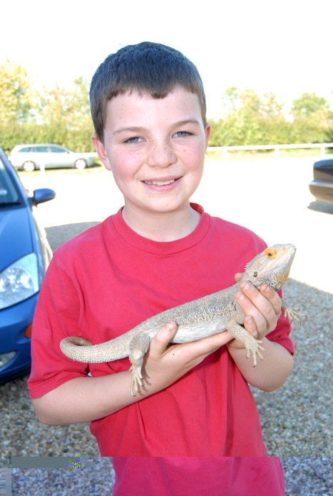Dragon lizard goes missing and turns up at pub two miles away