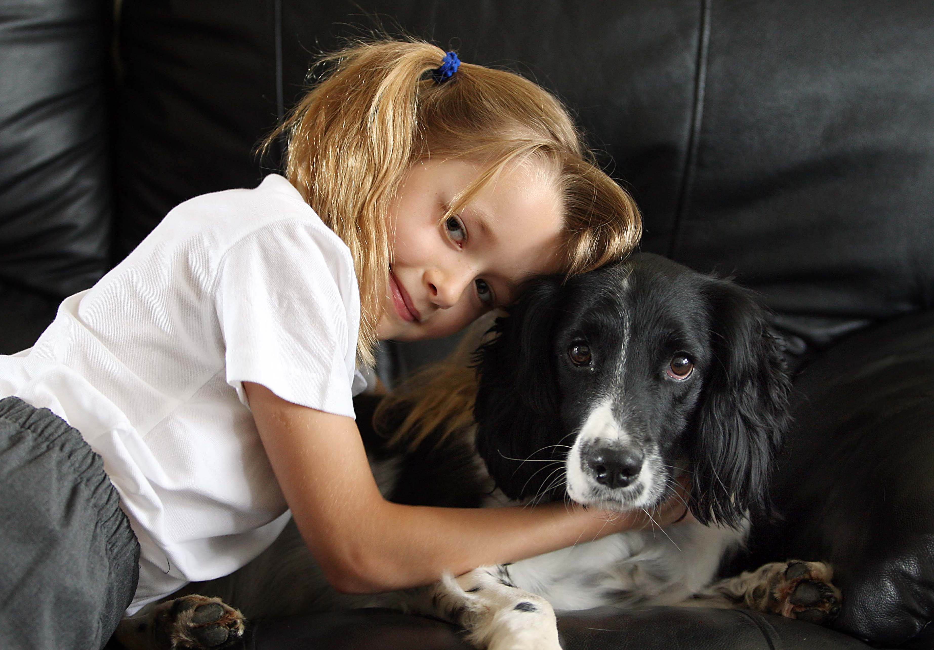 People more likely to save pets in a flood over possessions