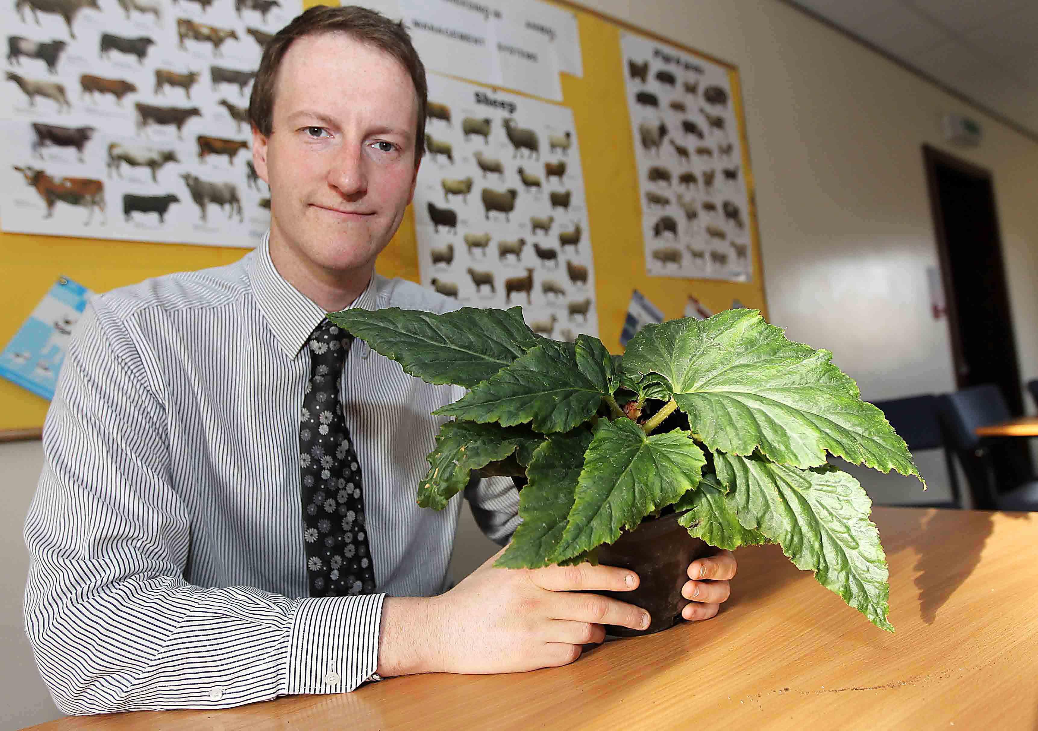 Ultra-rare plant, Kim Jong-il, lives in UK