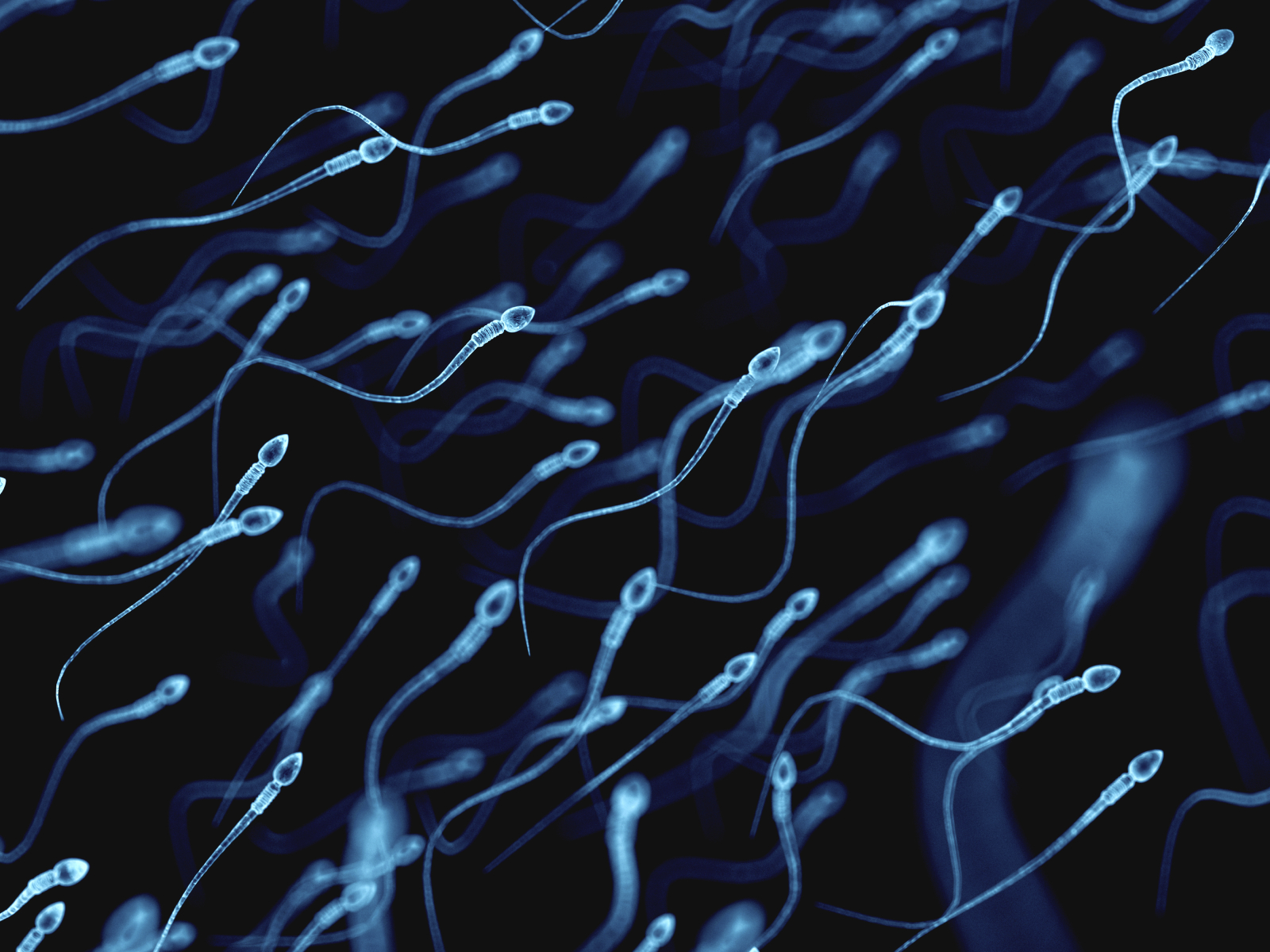 RAPIST CAUGHT AFTER LEAVING BEHIND ONE SPERM CELL
