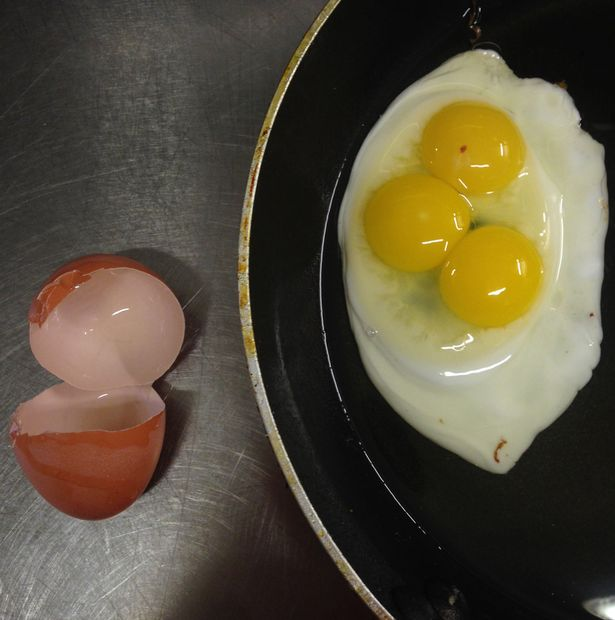 SISTERS CRACK OPEN EGGS FOR SUNDAY BRUNCH AND FIND TRIPLE YOLK