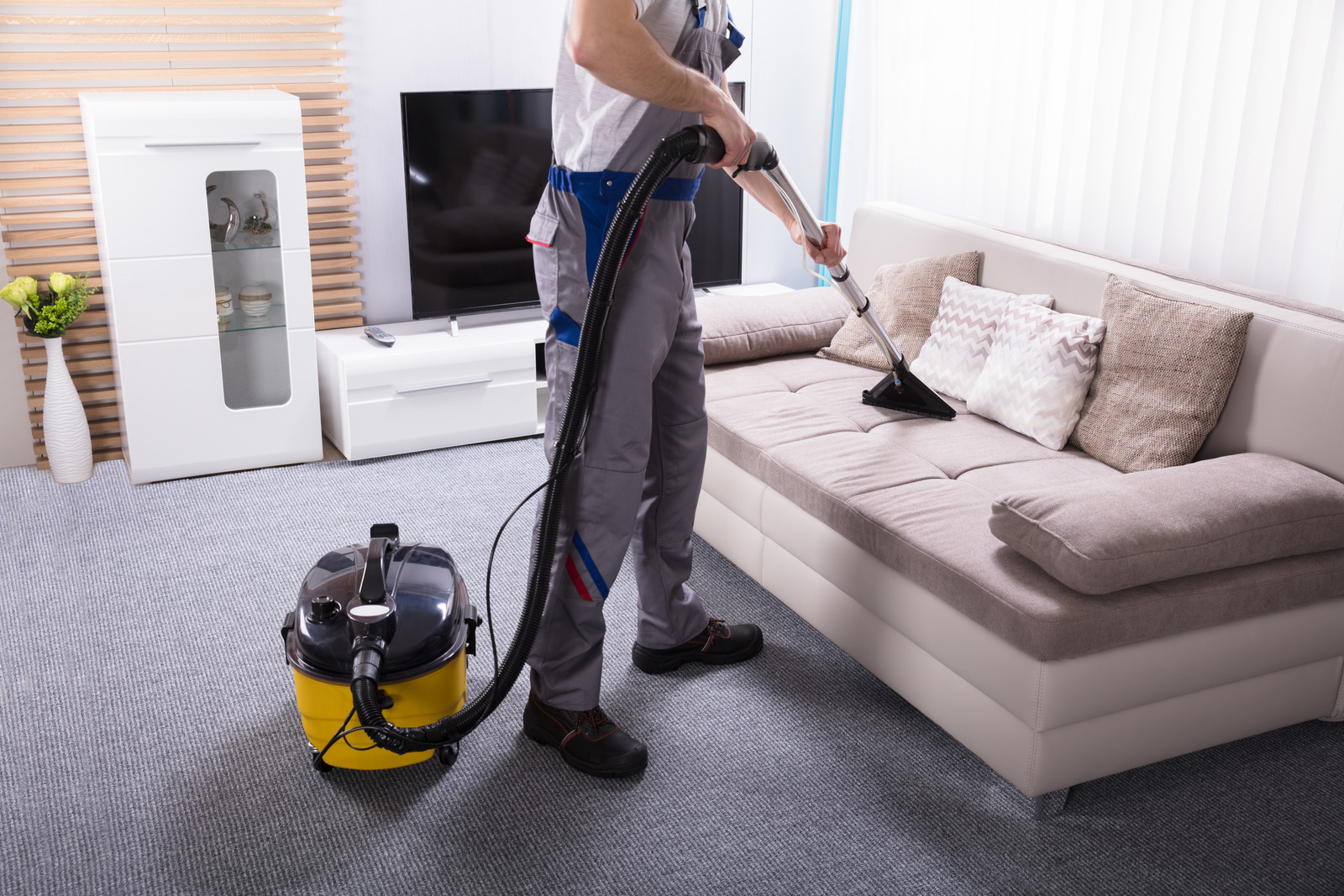 How to professionally clean a pet owners house?