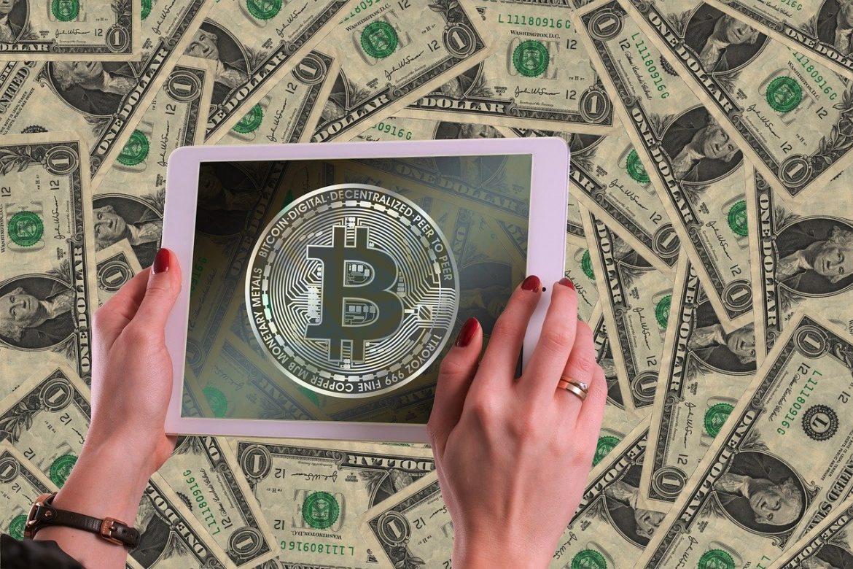 Bitcoin Circuit: A Highly Profitable & Intuitive Crypto Trading App