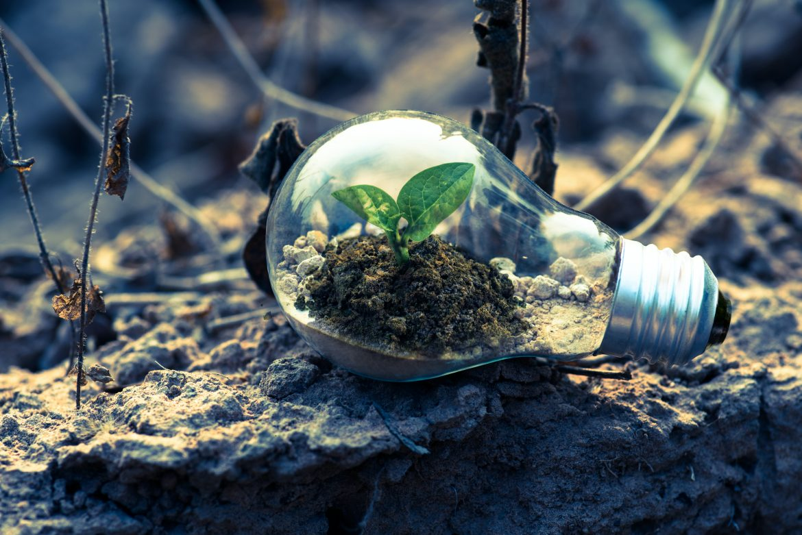 How to Make Your Company Way Greener