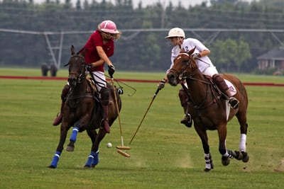 How US Polo Association Started Selling In the UK