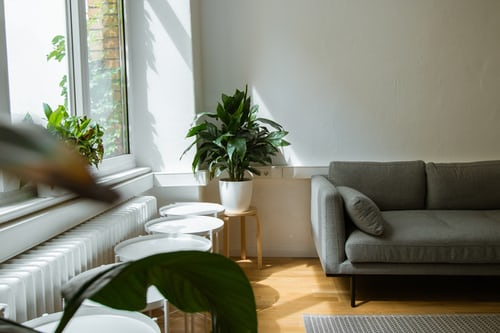 5 Important things to look out when viewing a rental property in 2021